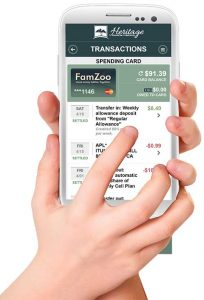 Family Financial Management with FamZoo